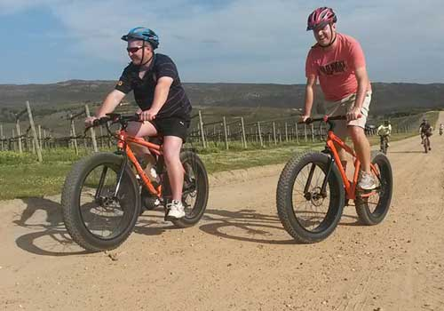 Cycling in Elgin in South Africa's Overberg
