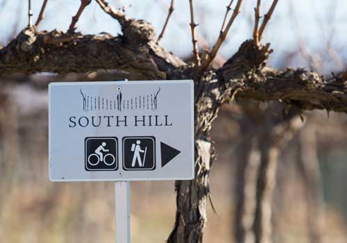 South Hill Sign to Activities at the vineyard