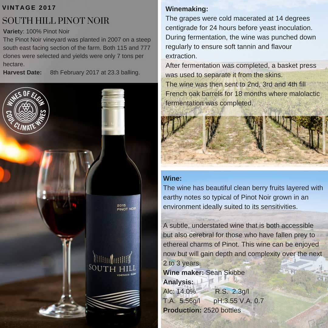 South Hill Pinot Noir Tasting Notes